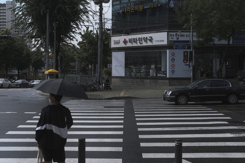 person in black and white jacket holding umbrella walking on pedestrian lane during daytime