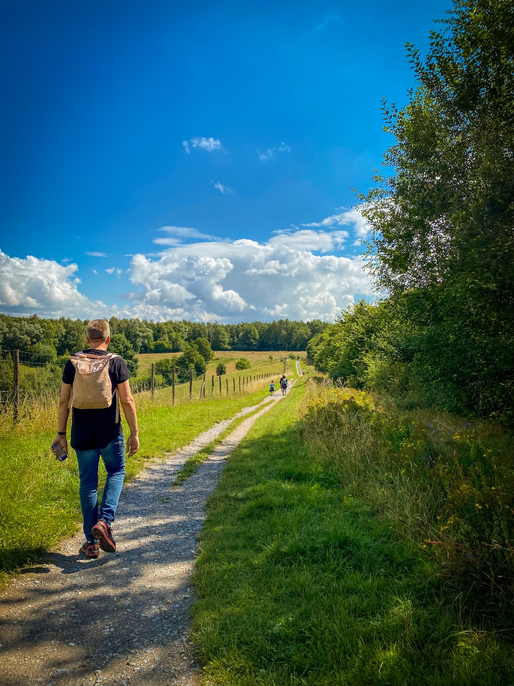 man in brown t-shirt and blue denim shorts walking on pathway between green grass field