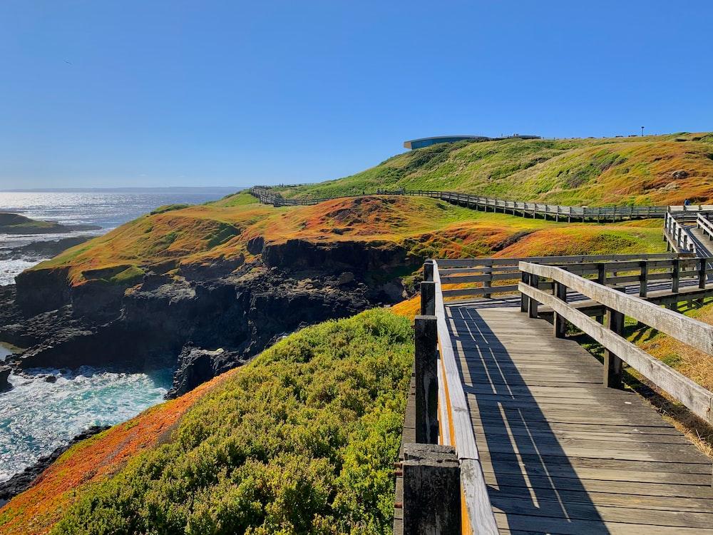 brown wooden bridge on green grass field near body of water during daytime