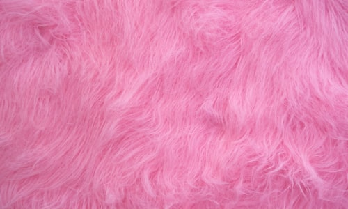 pink pickup line