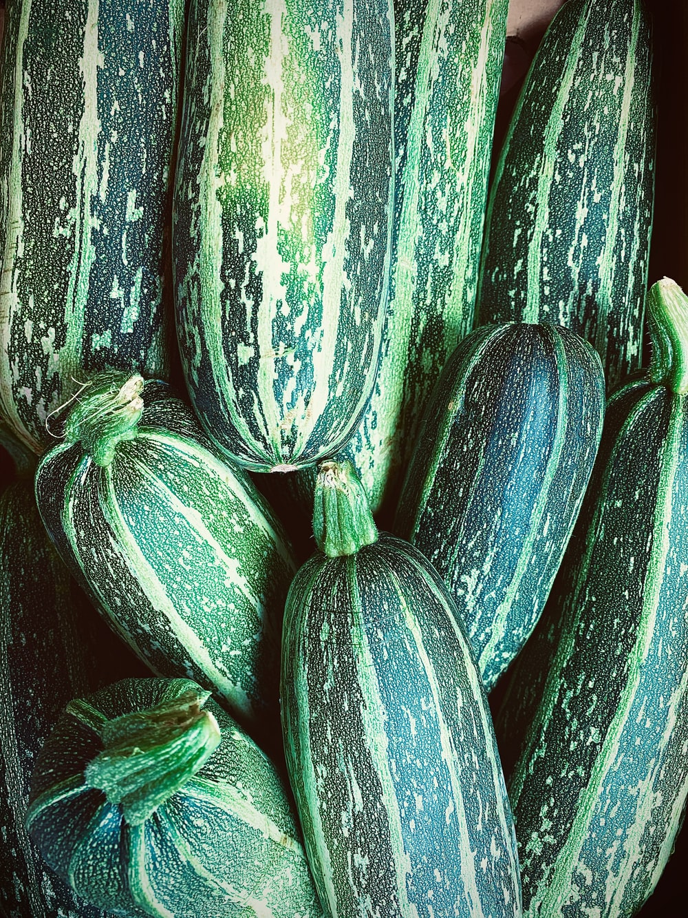 green and yellow cucumber lot