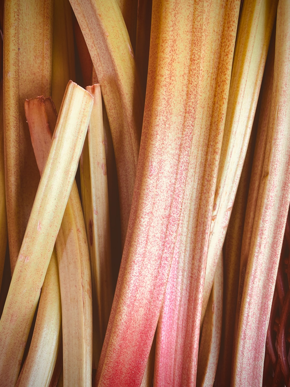 Ruibarbo / rhubarb healthy food - 5 a day