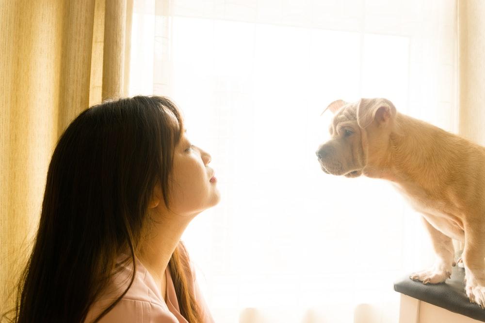 woman in white shirt beside white short coated dog
