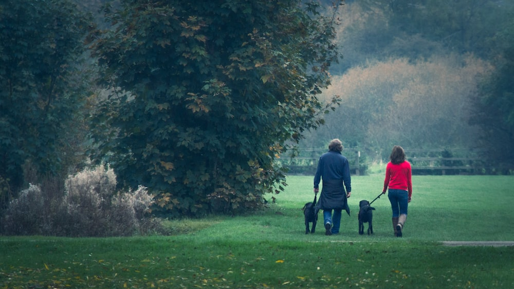 man and woman walking on green grass field near green trees during daytime