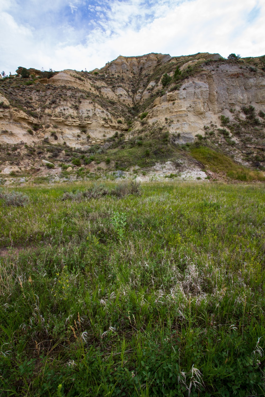 green grass field near brown mountain during daytime