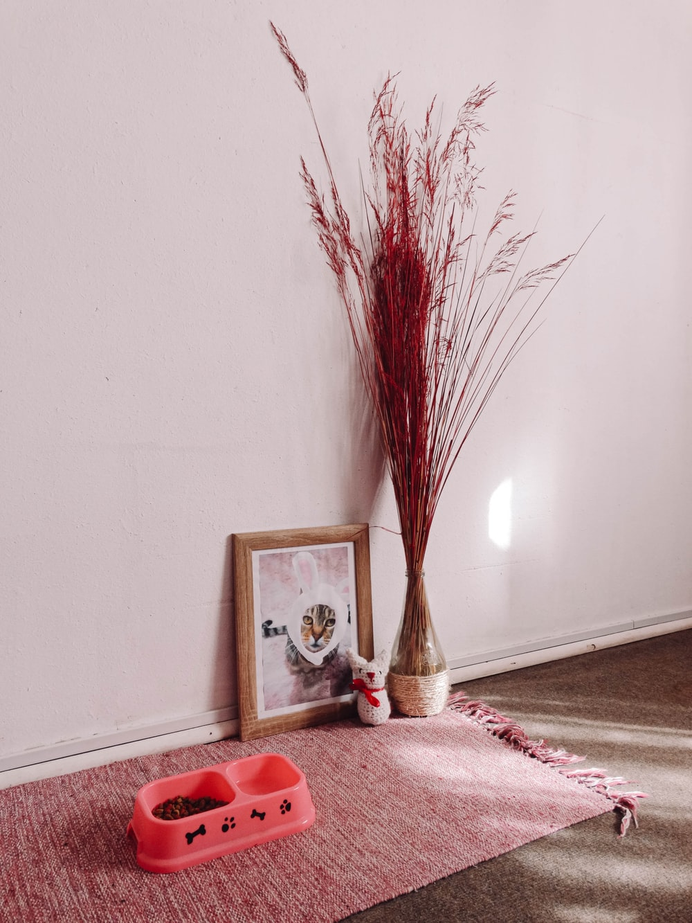 brown and red plant beside white wall