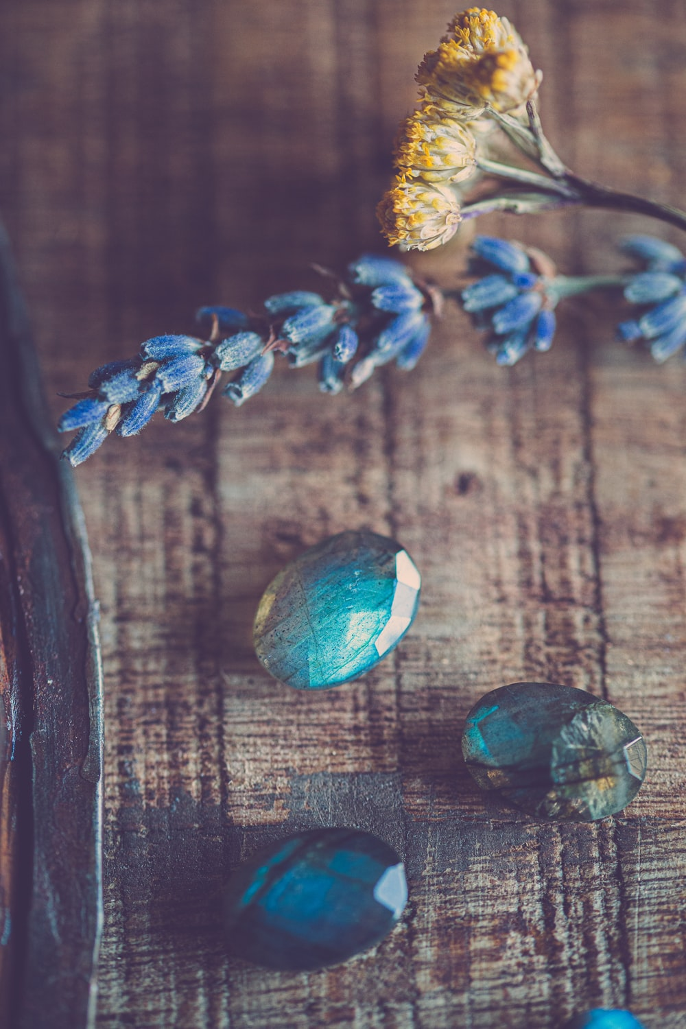 blue and white flower on brown wooden table