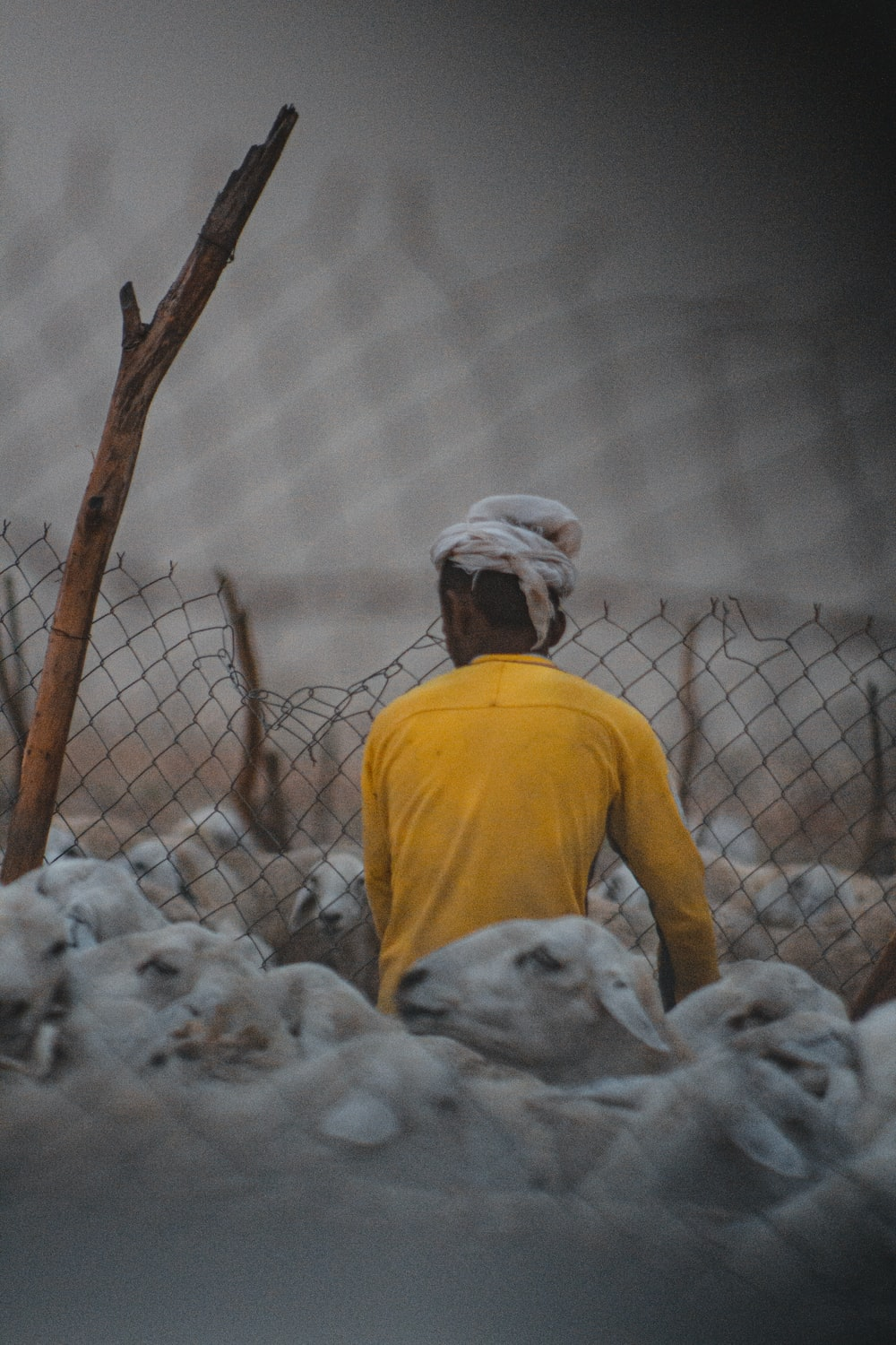man in yellow crew neck t-shirt standing beside gray metal fence during daytime