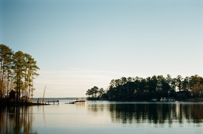 green trees near body of water during daytime south carolina zoom background