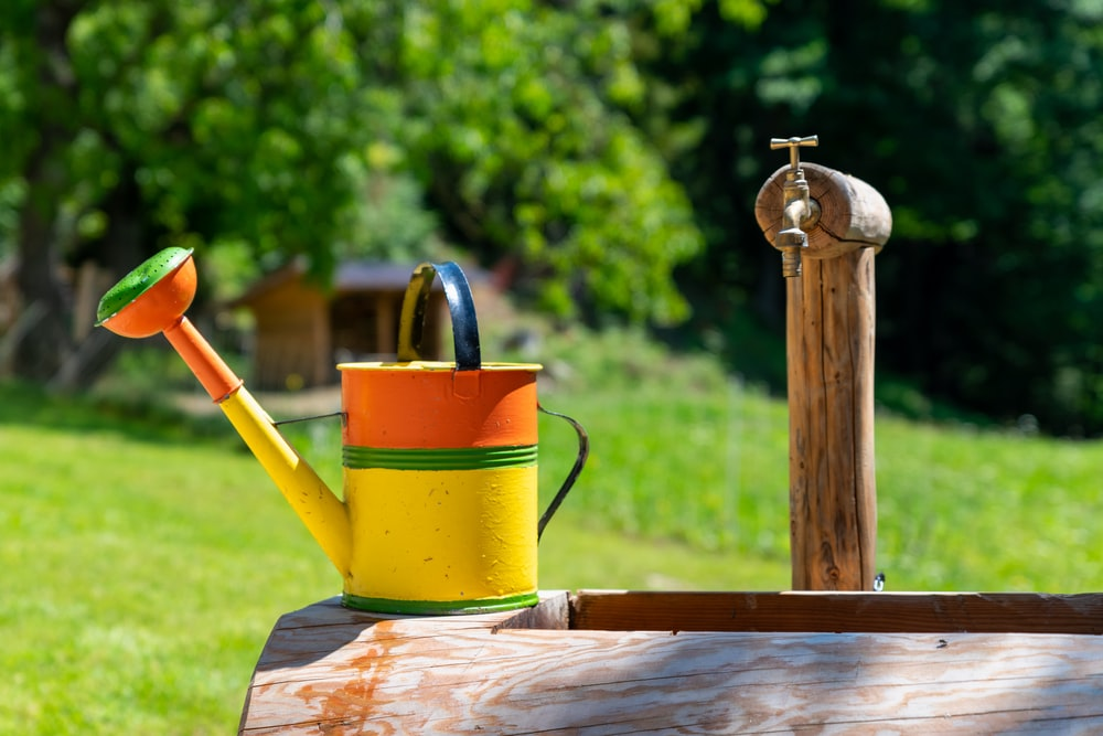 red and yellow watering can on brown wooden table