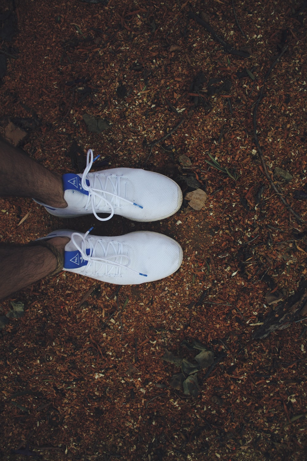 person wearing white and blue nike sneakers
