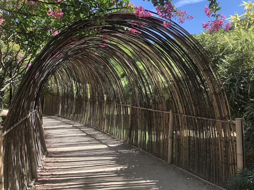 brown wooden bridge with green plants