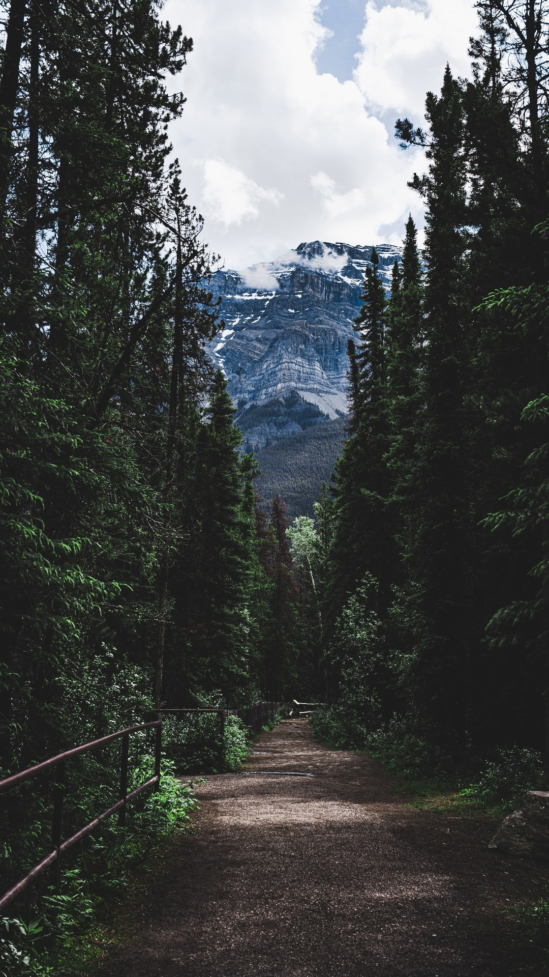 Athabasca Trail