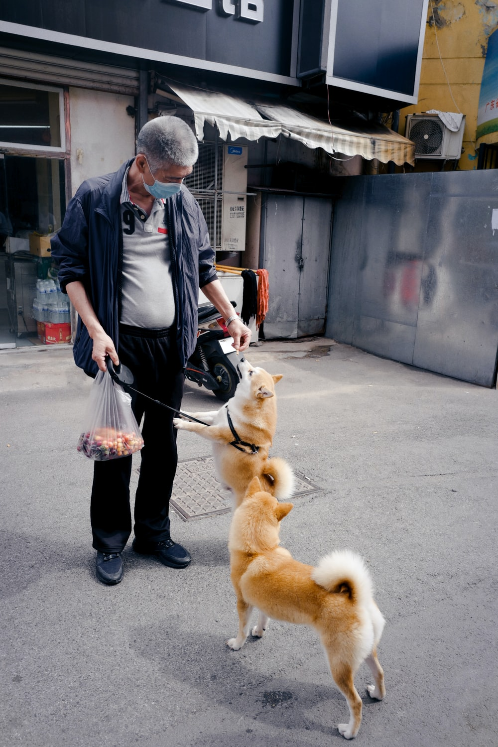 man in gray dress shirt and black pants holding brown short coated dog
