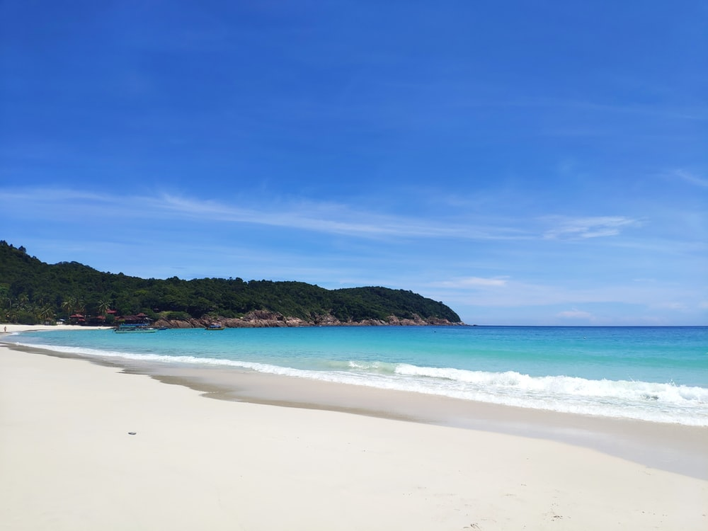 white sand beach with green trees and blue sky
