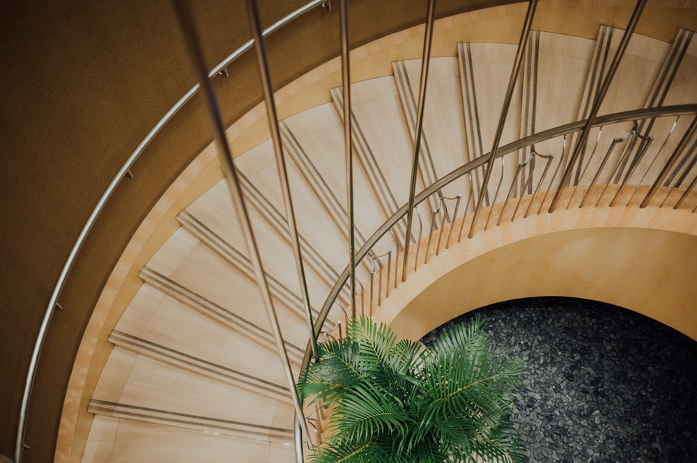 brown wooden spiral staircase with green plants