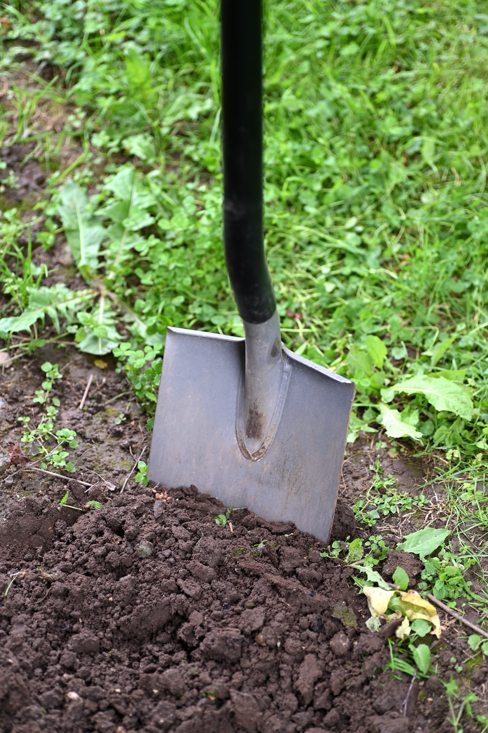 black and brown shovel on green grass