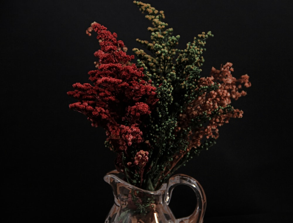 red and green plant on clear glass vase