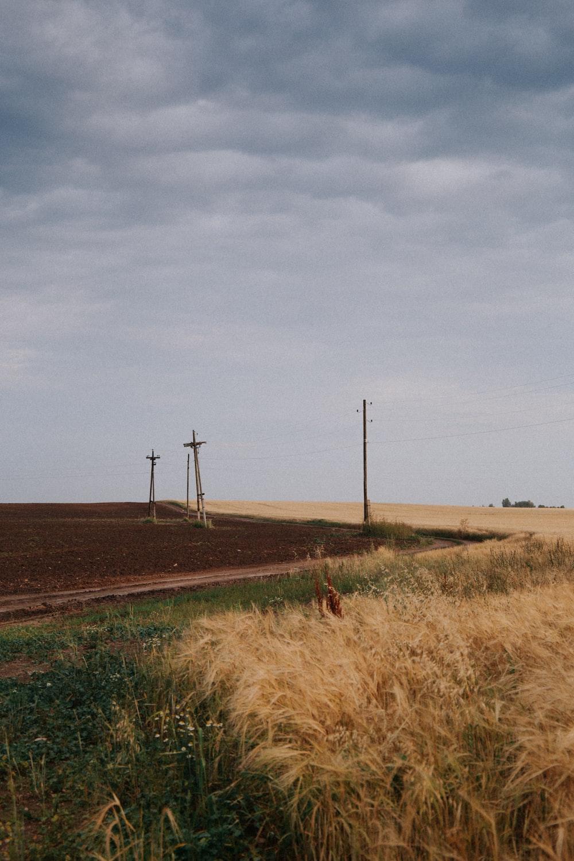 brown grass field near wind turbines under gray sky