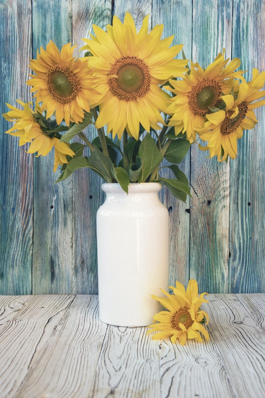 yellow sunflower in white ceramic vase
