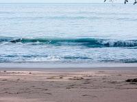 seawaters