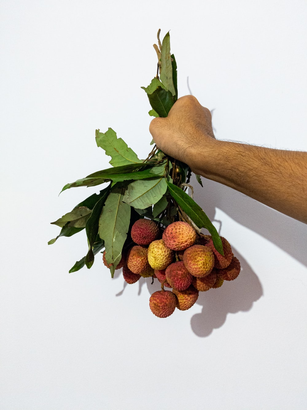 brown wooden stick with red strawberries