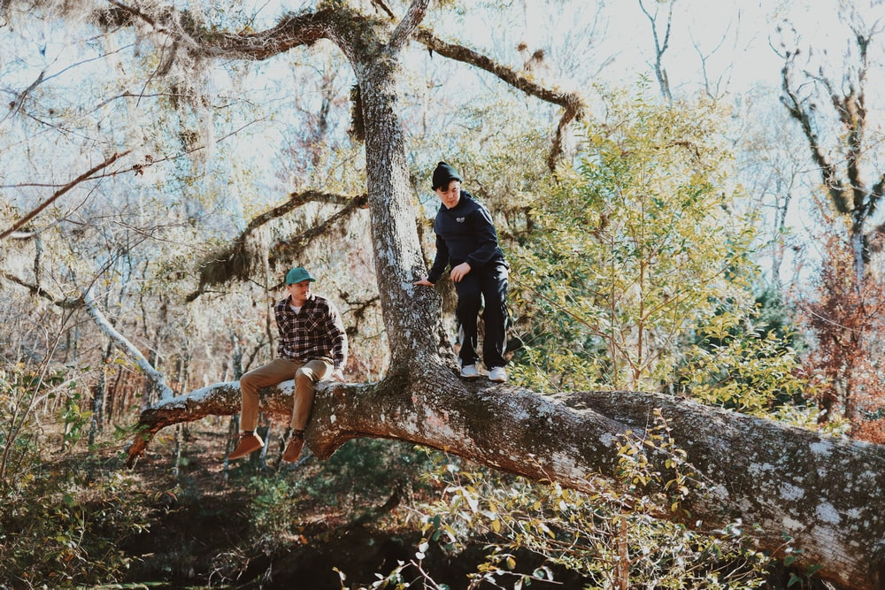 2 women standing on brown tree trunk during daytime