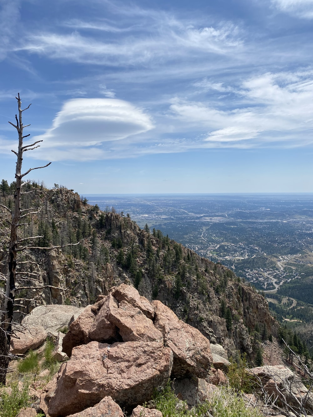 green trees on brown rocky mountain under blue sky during daytime