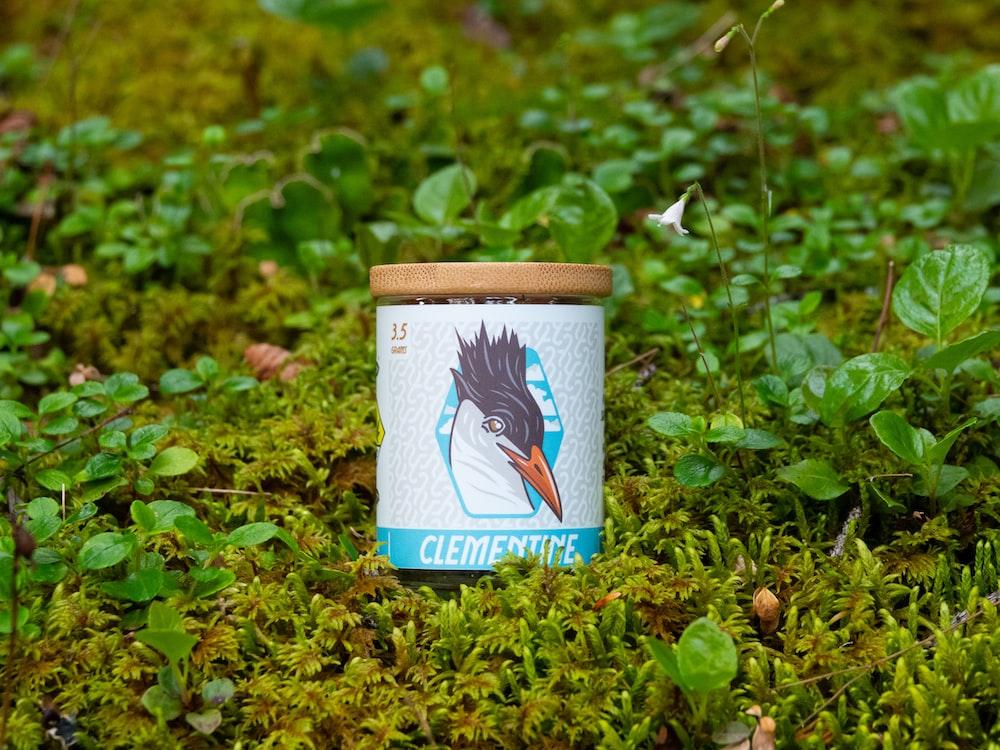 blue and white ceramic mug on green grass