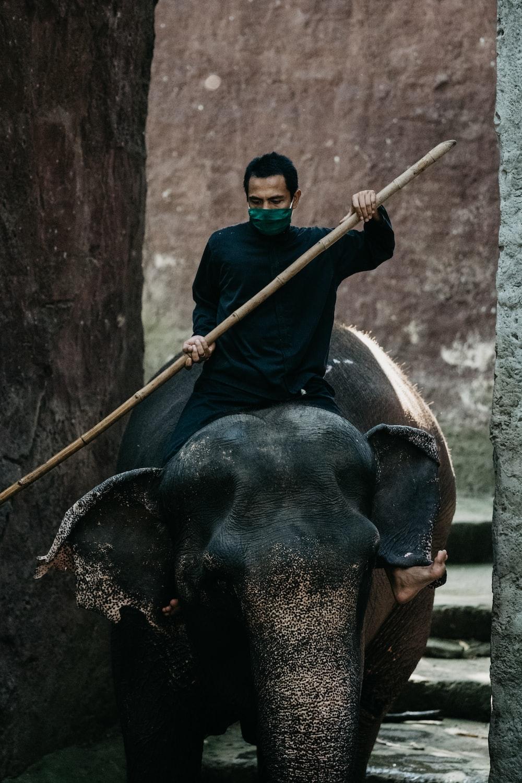 man in black shirt riding on black elephant during daytime