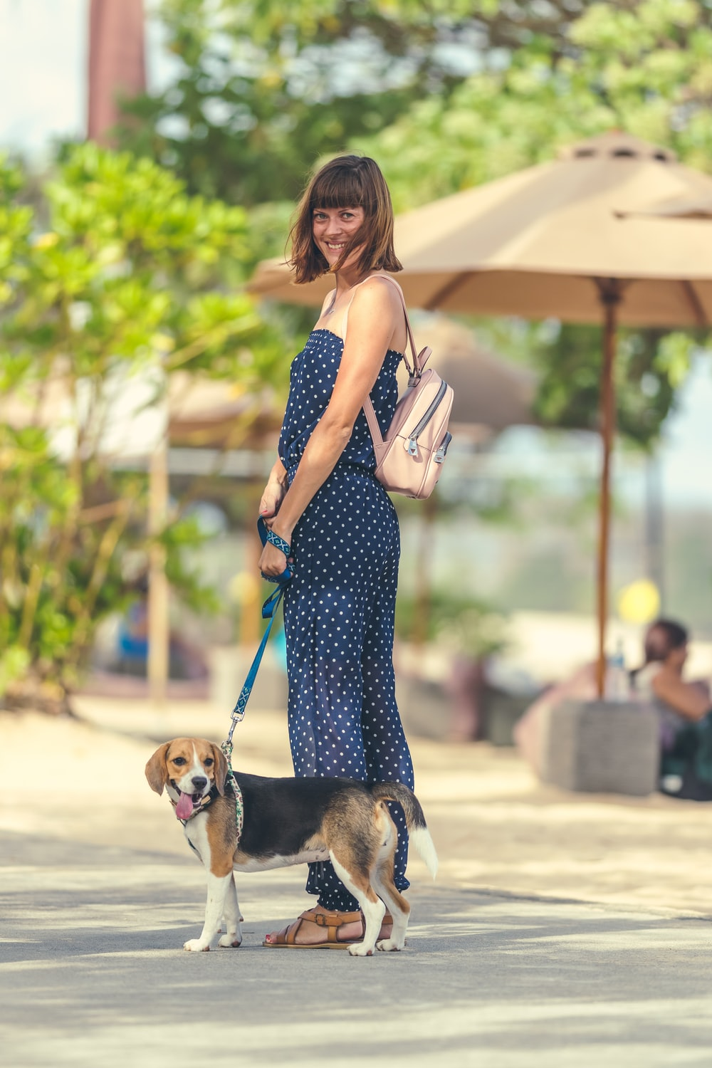 woman in black and white polka dot dress carrying brown and white short coated dog