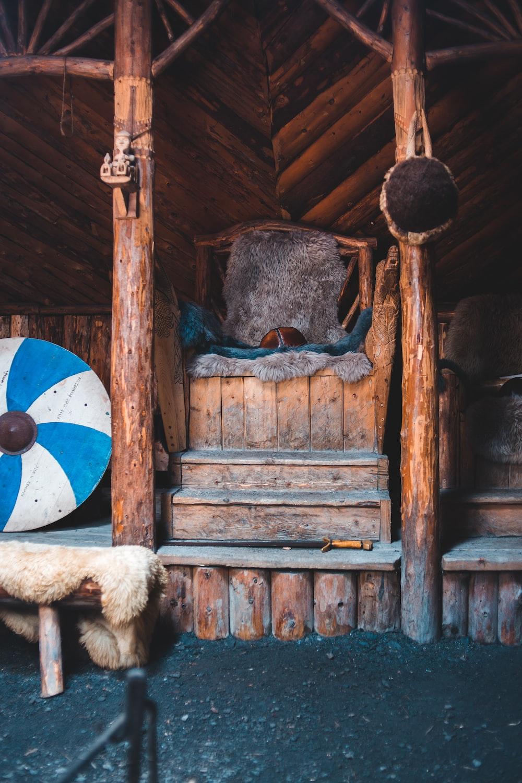 blue and white bird on brown wooden door