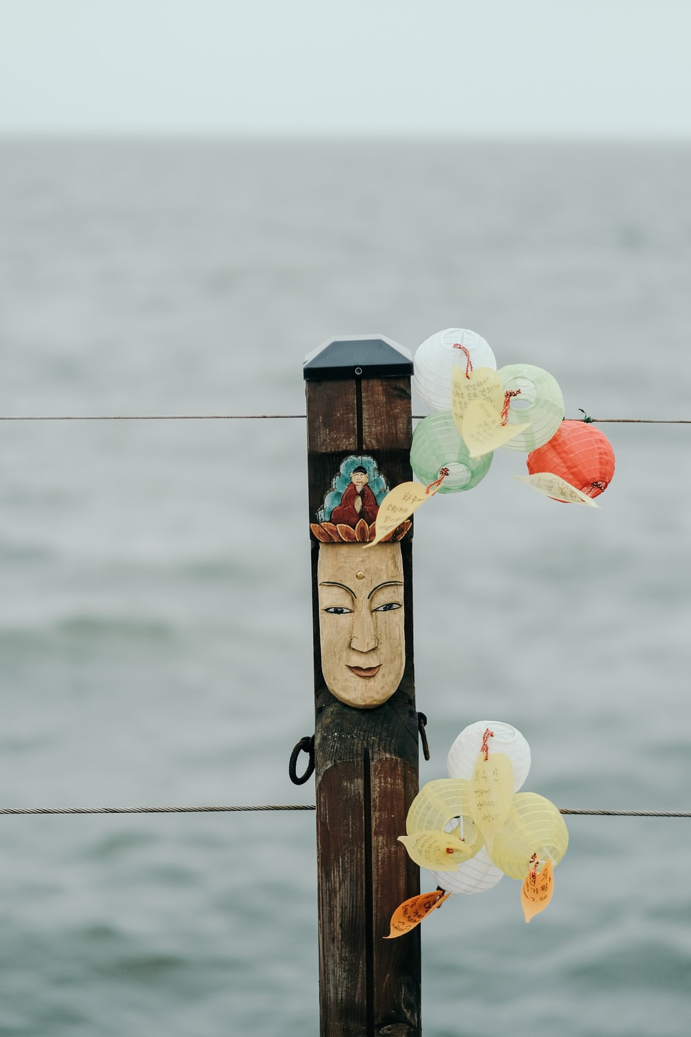 white and yellow flower on brown wooden post