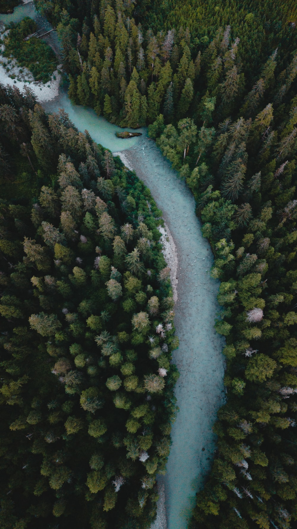 aerial view of river in between green trees during daytime