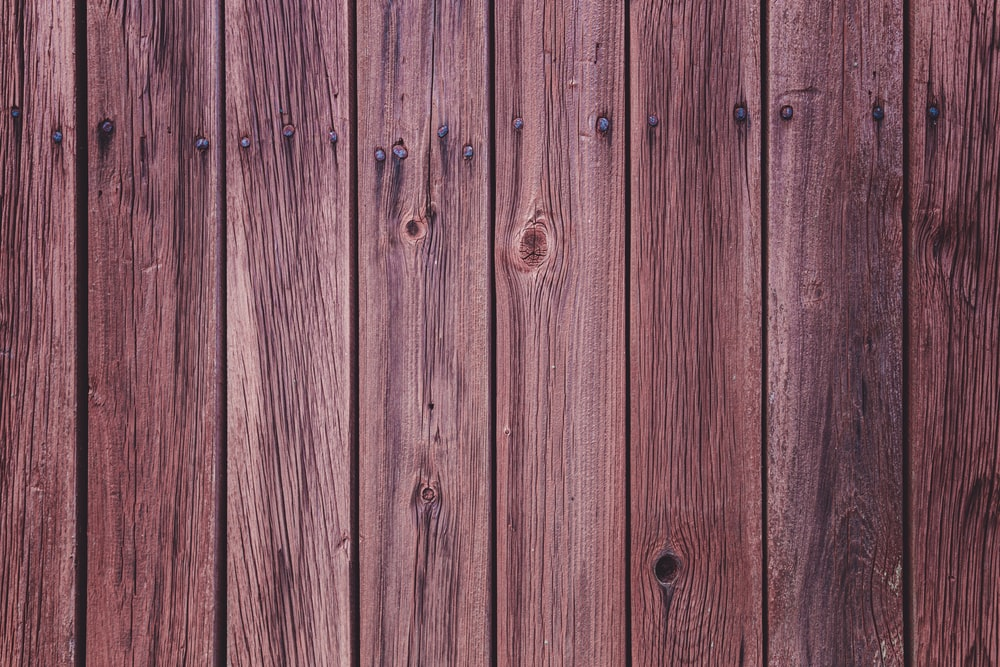 green wooden fence during daytime