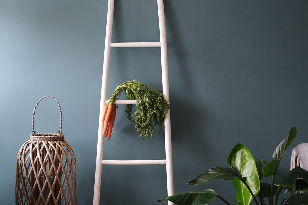 Green Plant On White Wooden Ladder - unsplash