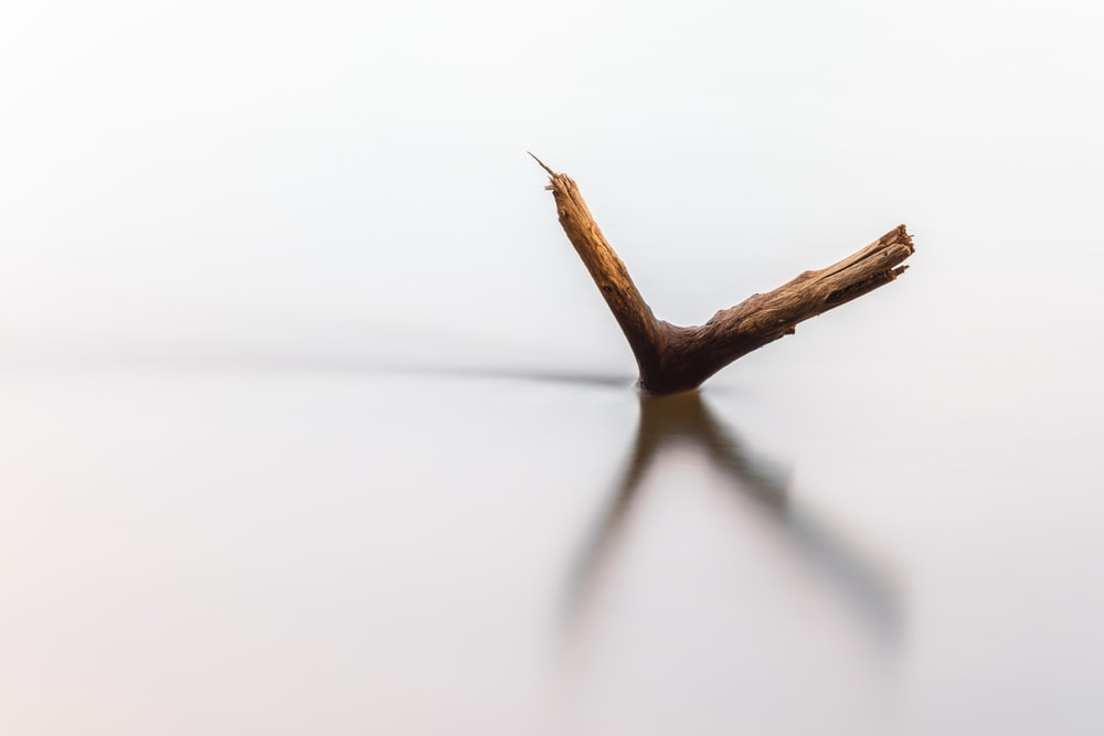 brown stick on white surface