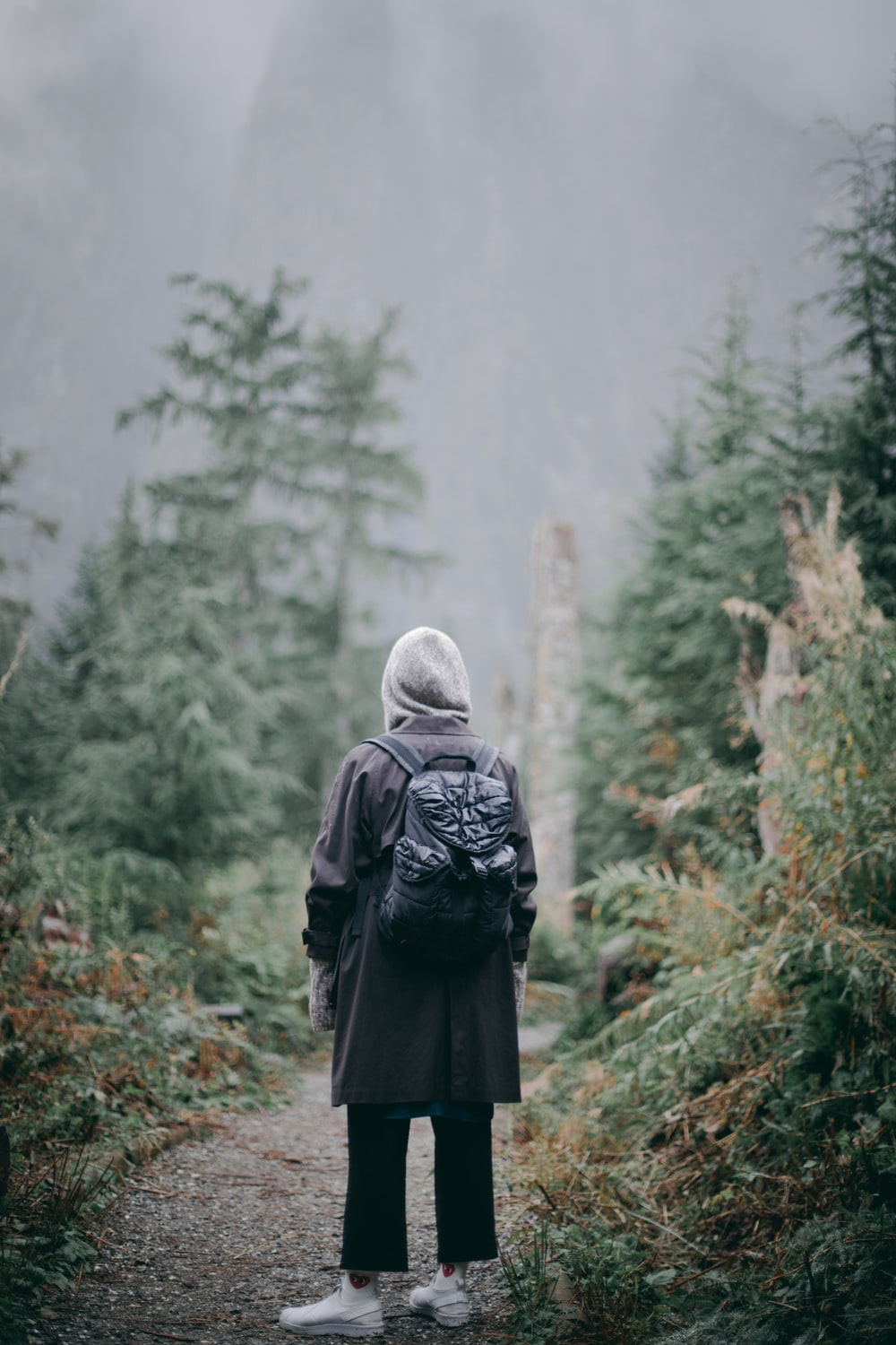 person in black jacket and gray backpack standing on gray rock in front of green trees