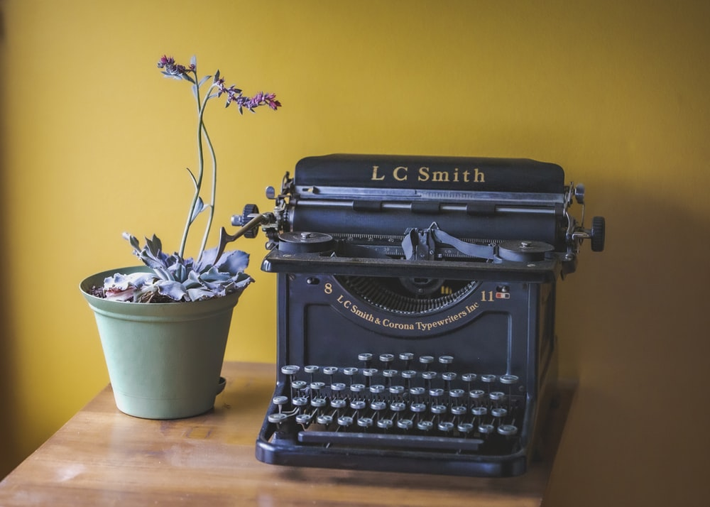 black typewriter beside potted plant