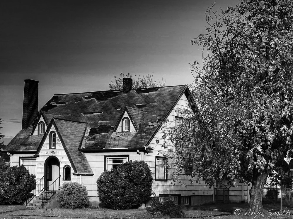 grayscale photo of house near trees