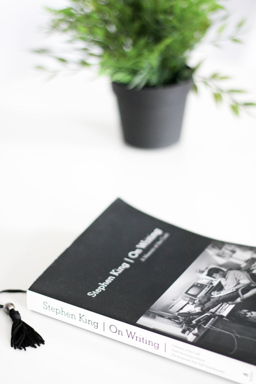 black and white book beside green potted plant