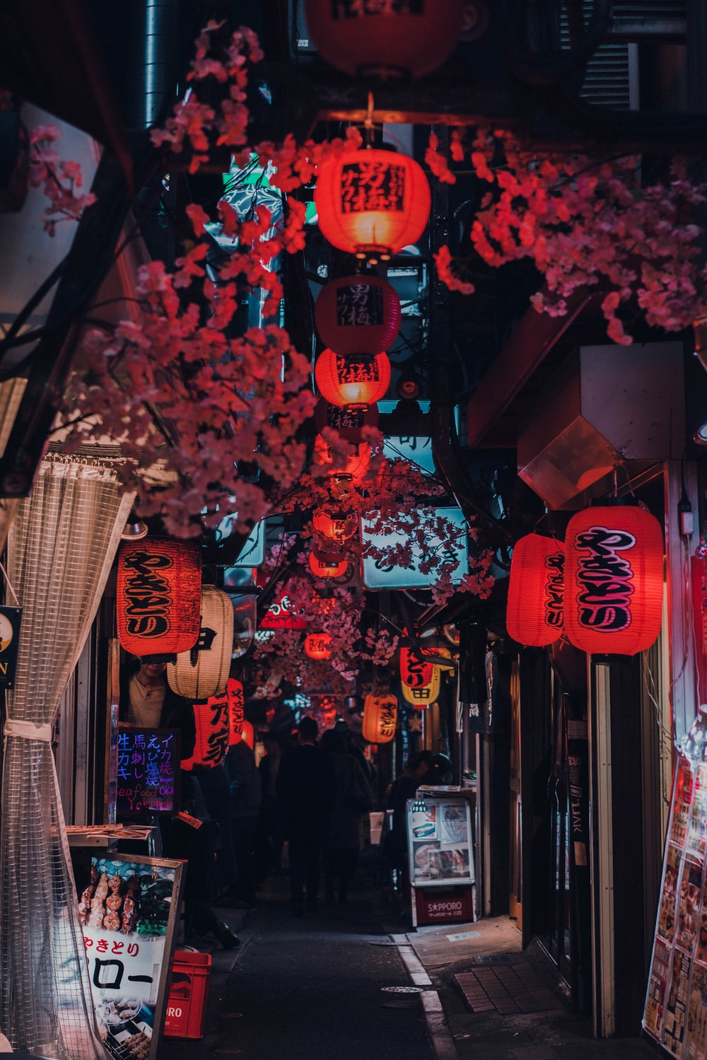 people walking on street with red lanterns