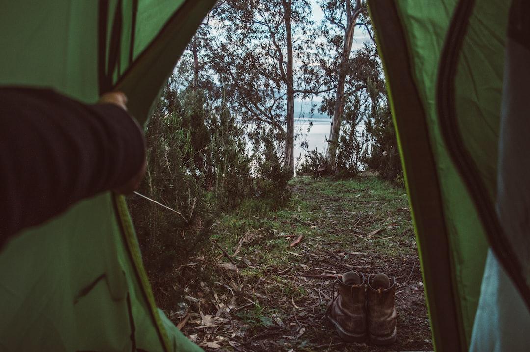 Green Tent Near Green Trees During Daytime - unsplash