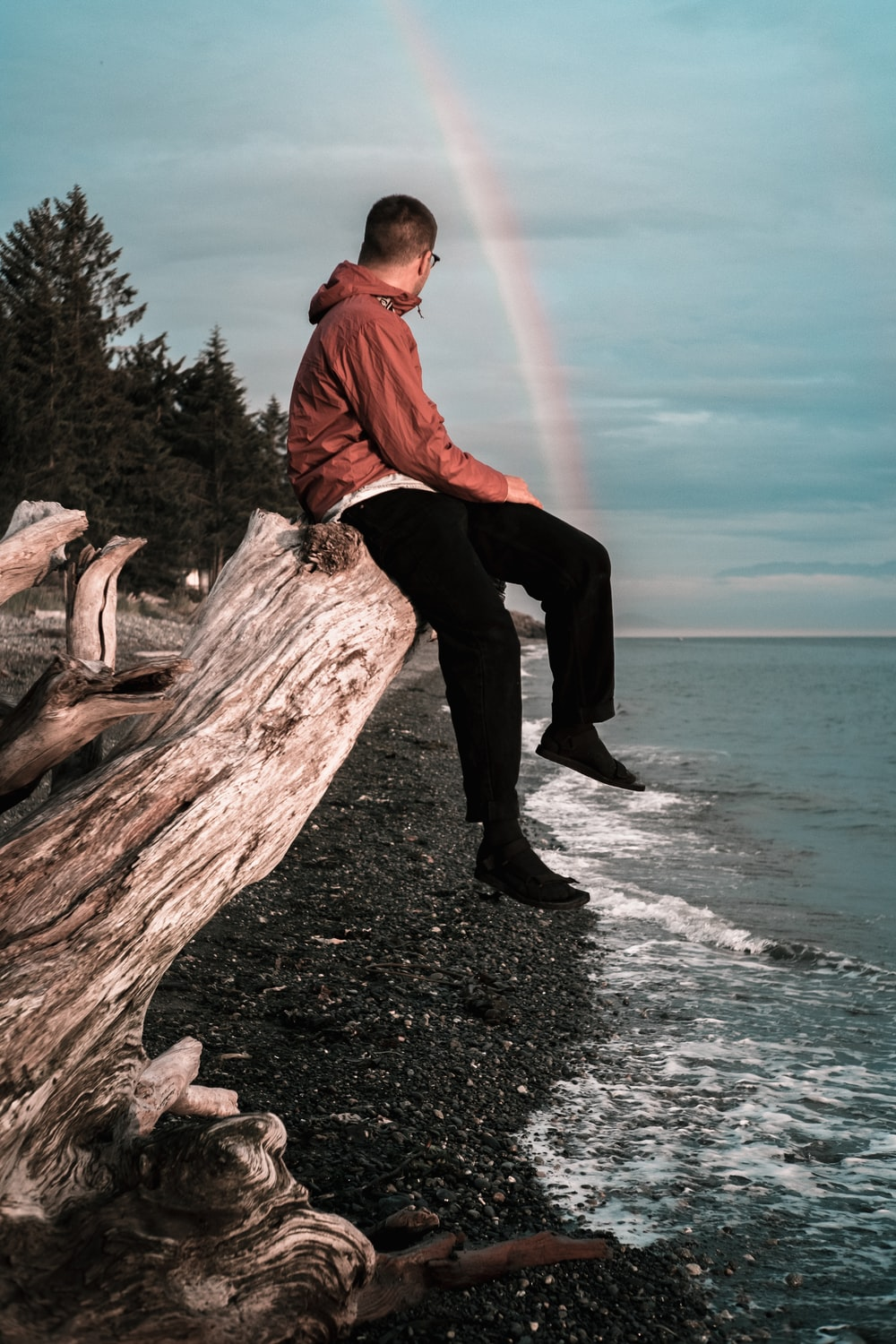 man in red dress shirt and black pants sitting on brown tree log on beach during