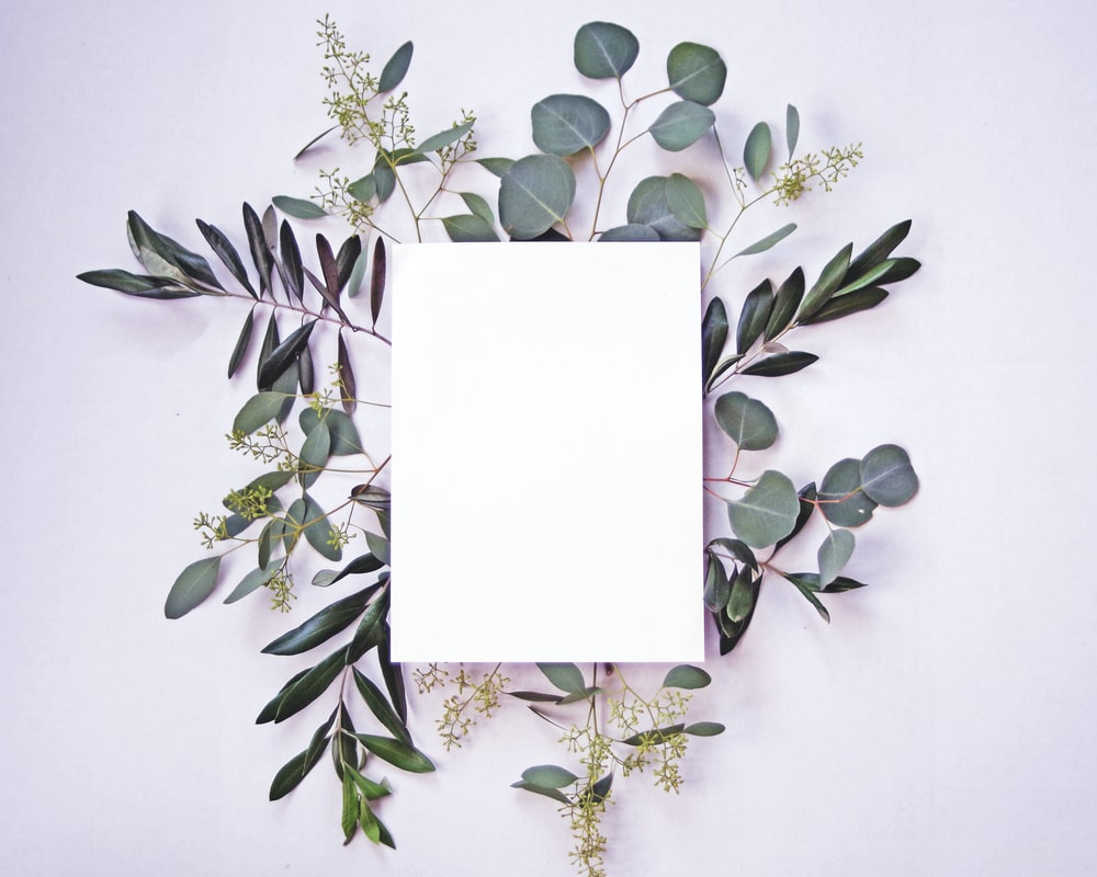white paper on green leaves