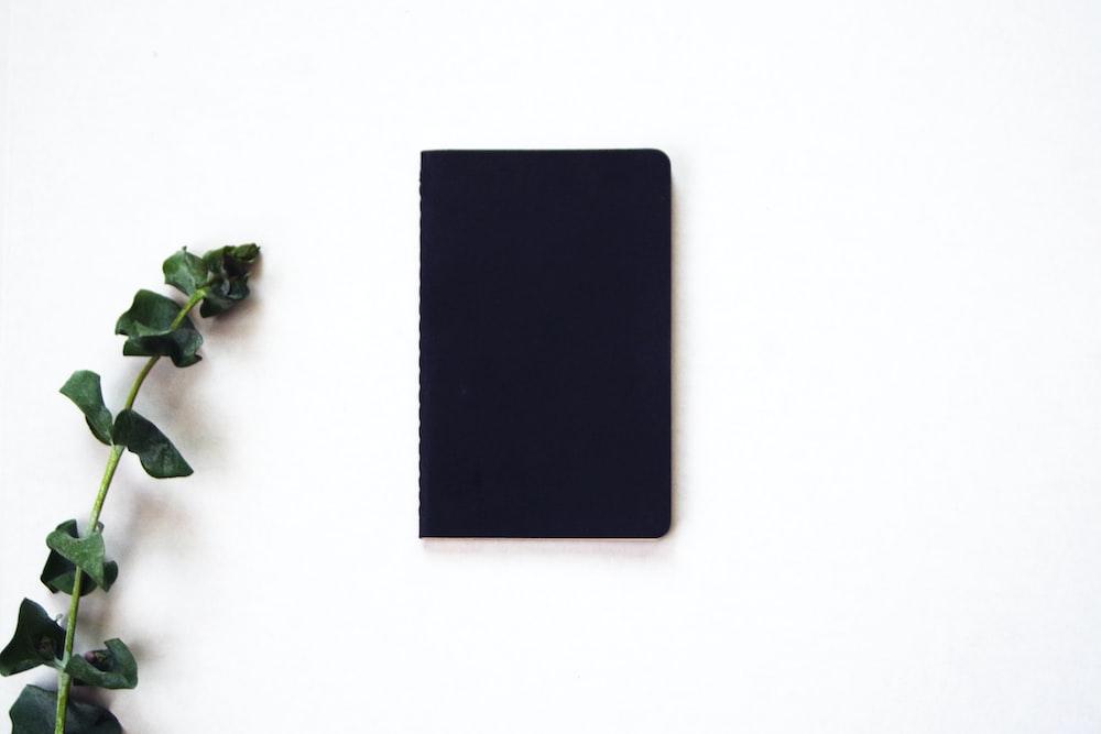 black rectangular board beside green plant