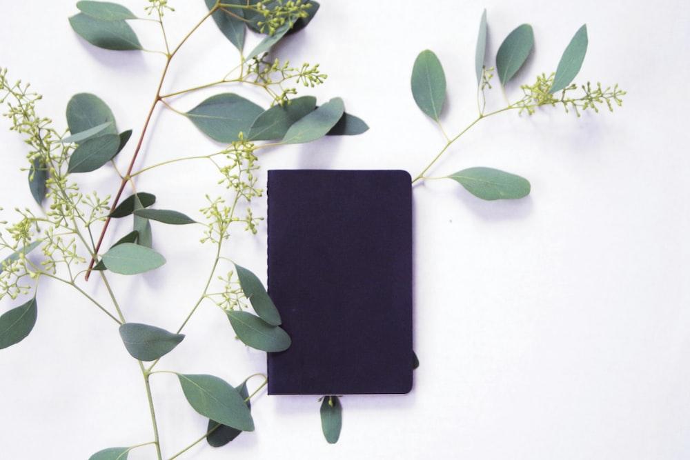 black rectangular device on white wall