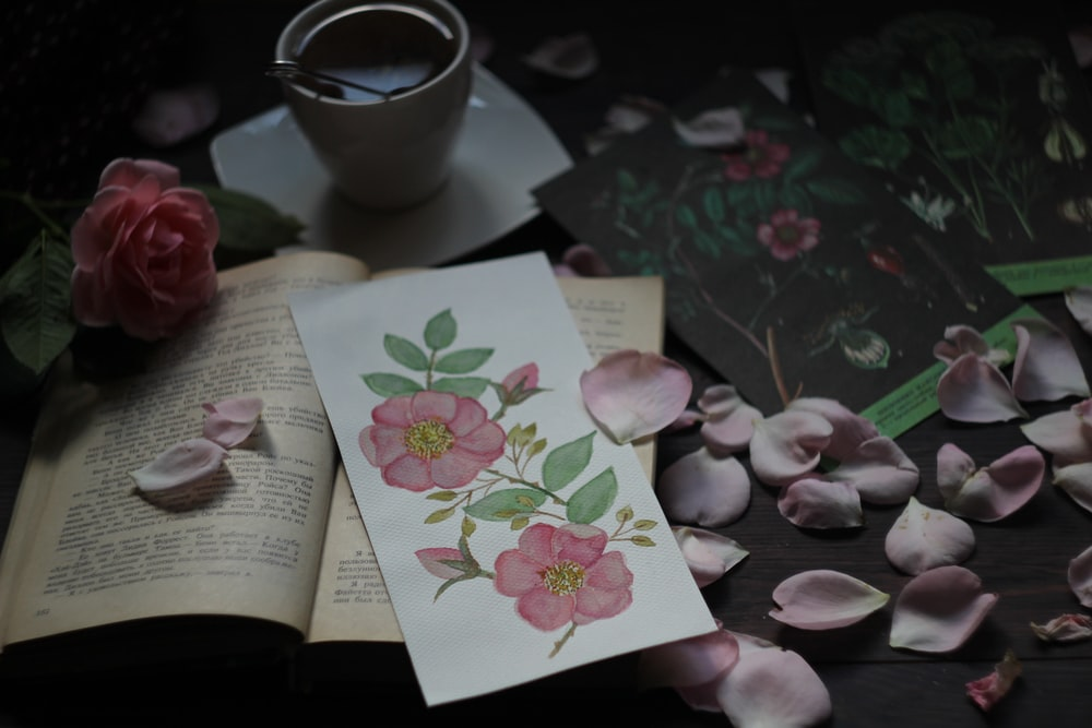 person holding white and pink floral greeting card