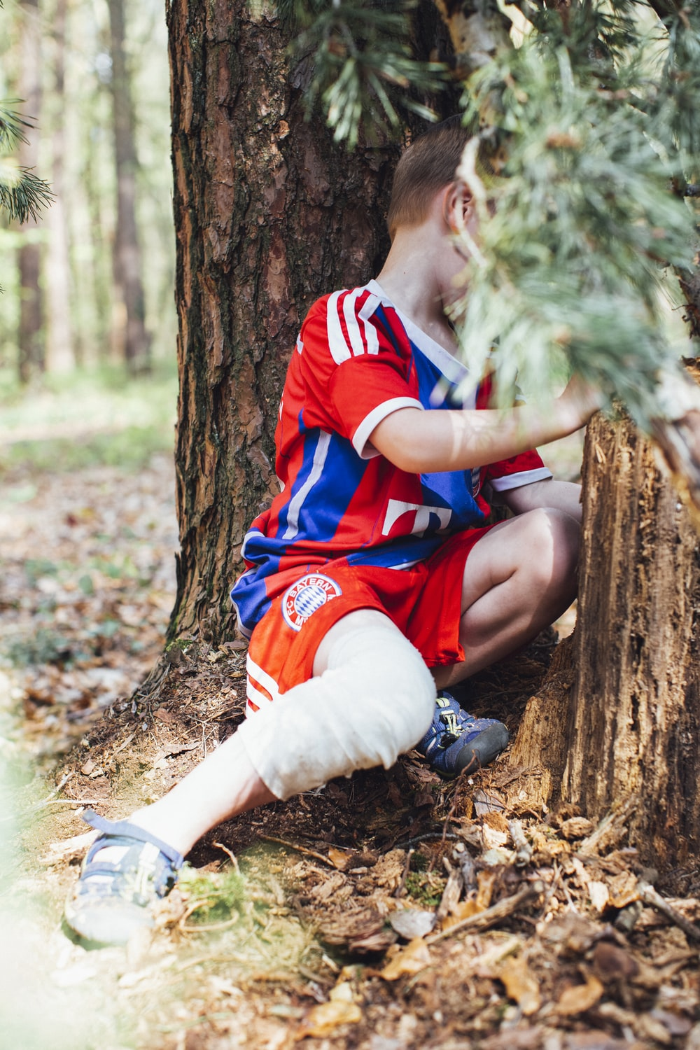 boy in red and blue polo shirt sitting on tree log
