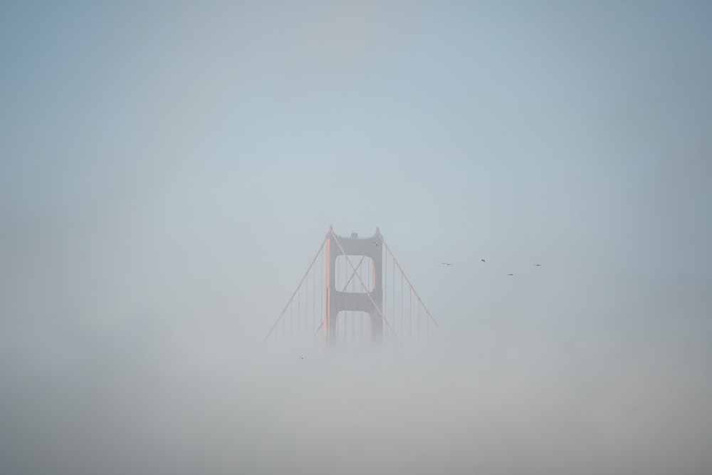 golden gate bridge covered with fog